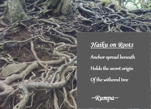 Roots haiku now